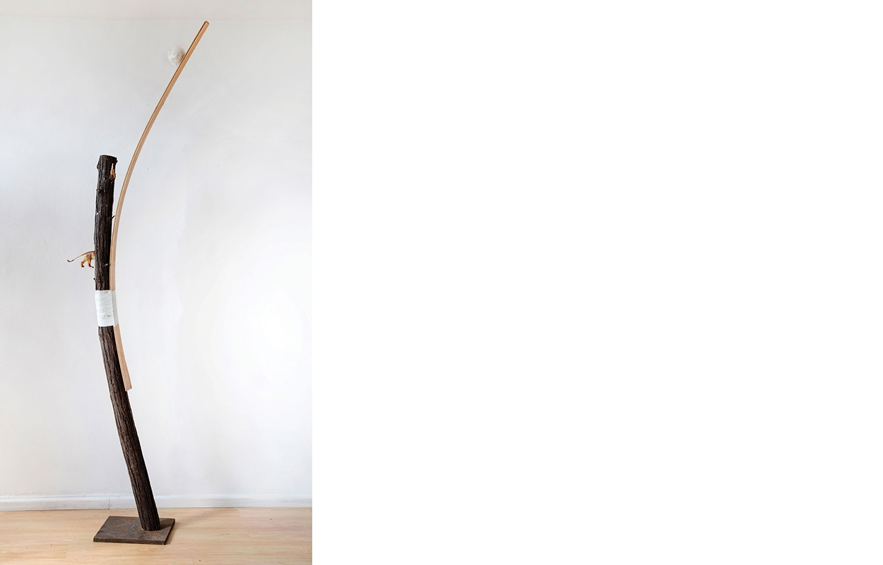 "איפה אריה? |  עץ, פלסטיק סלוטייפ, 240/40 ס""מ, 2018"